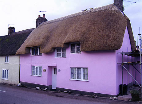 Rethatched terraced cottage in combed wheat reed, Maiden Newton Dorset